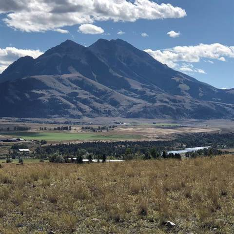 TBD Aquarius Lane, Emigrant, MT 59027 (MLS #339947) :: Black Diamond Montana