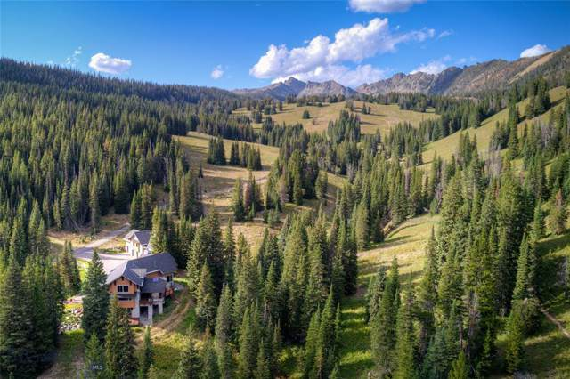 230 Beehive Basin Road, Big Sky, MT 59716 (MLS #340181) :: Hart Real Estate Solutions