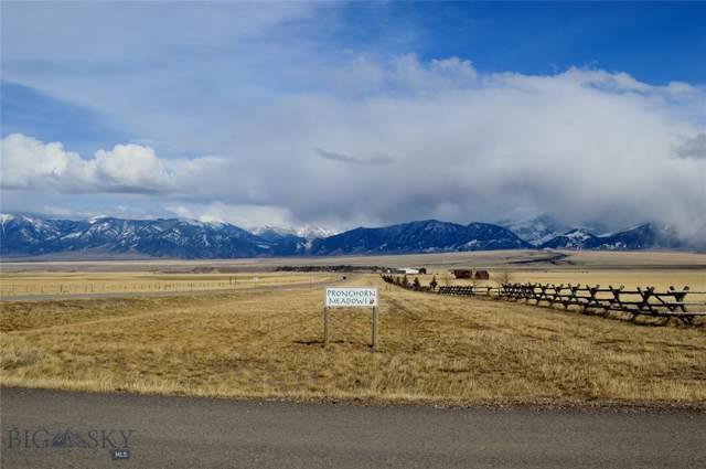 54 Montana Way, Ennis, MT 59729 (MLS #340287) :: Hart Real Estate Solutions
