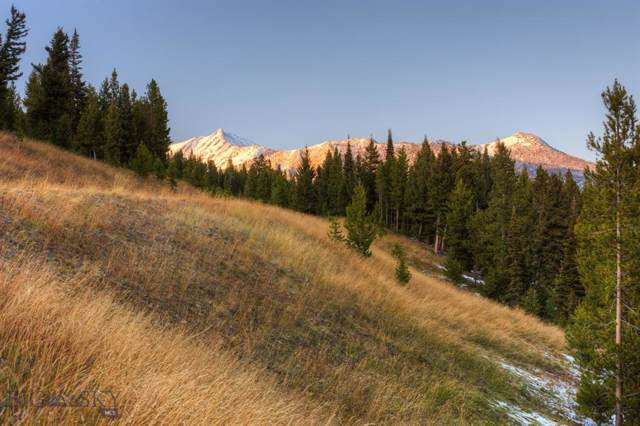 TBD Crow Point, Lot 114, Big Sky, MT 59716 (MLS #340390) :: Montana Life Real Estate