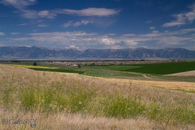 TBD Tract 1 Dyk Road, Amsterdam, MT 59741 (MLS #340493) :: Hart Real Estate Solutions