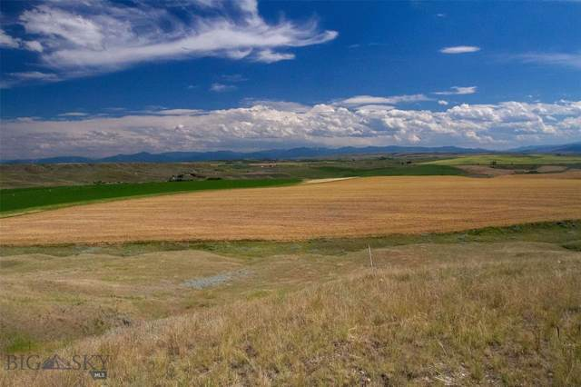 TBD Tract 3 Dyk Road, Amsterdam, MT 59741 (MLS #340494) :: Hart Real Estate Solutions
