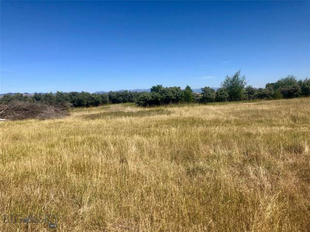 220 Old Town Road, Three Forks, MT 59752 (MLS #340539) :: Hart Real Estate Solutions