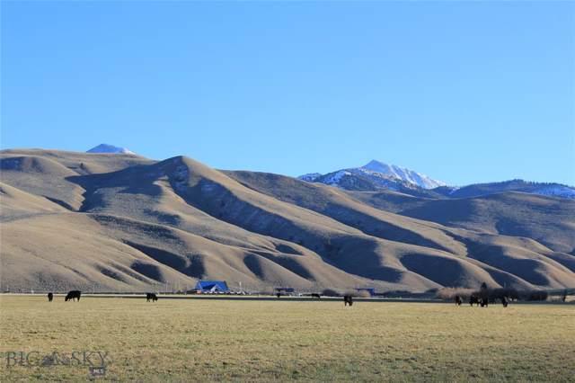 2942 Little Sheep Creek Road, Lima, MT 59739 (MLS #340619) :: Black Diamond Montana