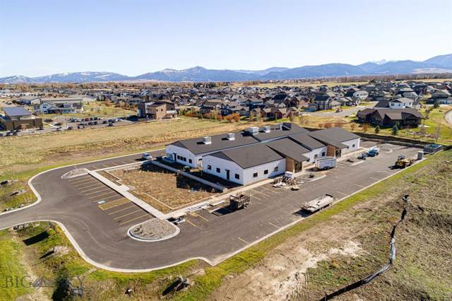 290 W Haley Springs Road, Bozeman, MT 59718 (MLS #340777) :: Hart Real Estate Solutions