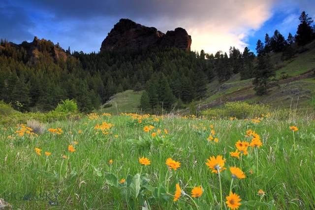 0 Old Us Highway 91, Cascade, MT 59421 (MLS #340816) :: Black Diamond Montana