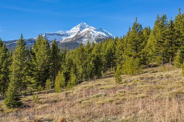 Lot 26 Washakie, Big Sky, MT 59716 (MLS #340855) :: Hart Real Estate Solutions