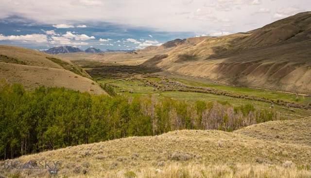 4000 Lima Dam Road, Lima, MT 59739 (MLS #340911) :: Hart Real Estate Solutions