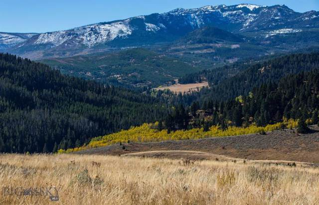 TBD Trail Creek Road, Bozeman, MT 59715 (MLS #340918) :: Black Diamond Montana