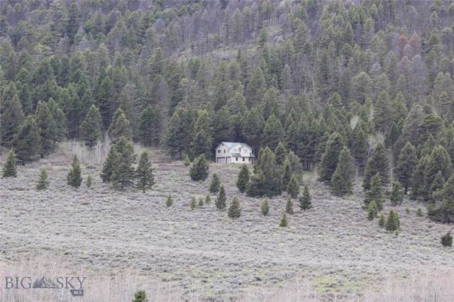 90 Buffalo Lance Road, Cameron, MT 59720 (MLS #340939) :: Black Diamond Montana