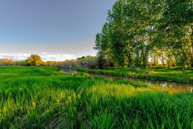 NHN River Road, Bozeman, MT 59718 (MLS #341029) :: Hart Real Estate Solutions