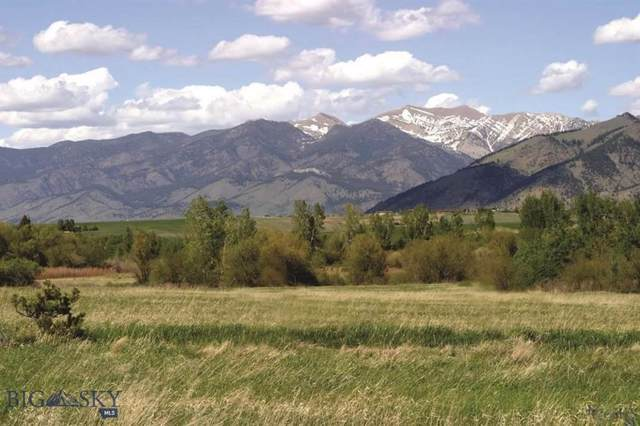 Tract 14A Autumn Ridge Ranch, Bozeman, MT 59715 (MLS #341109) :: Hart Real Estate Solutions