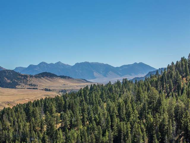 Lot #18 South Sun West Road, Cameron, MT 59720 (MLS #341644) :: Black Diamond Montana