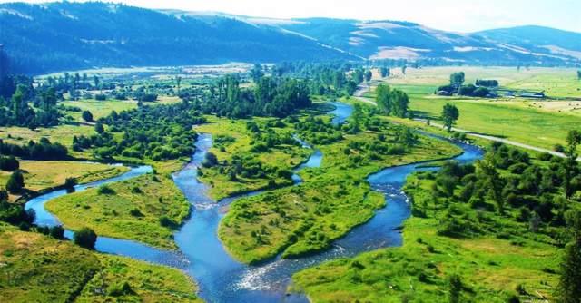 NHN Blue Ribbon Ranch, Philipsburg, MT 59858 (MLS #341806) :: Black Diamond Montana