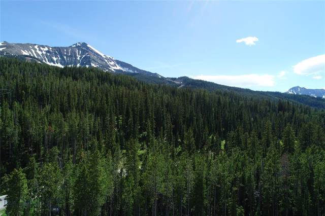 Lot 1 Woodrose Way, Big Sky, MT 59716 (MLS #341886) :: Hart Real Estate Solutions