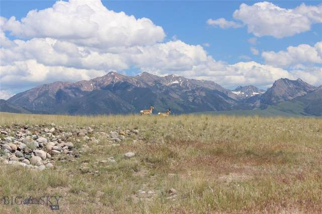Lot 13 Sphinx Mountain Subdivision, Cameron, MT 59720 (MLS #341908) :: Hart Real Estate Solutions