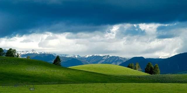 TBD Moose Road, West Yellowstone, MT 59758 (MLS #342067) :: Black Diamond Montana