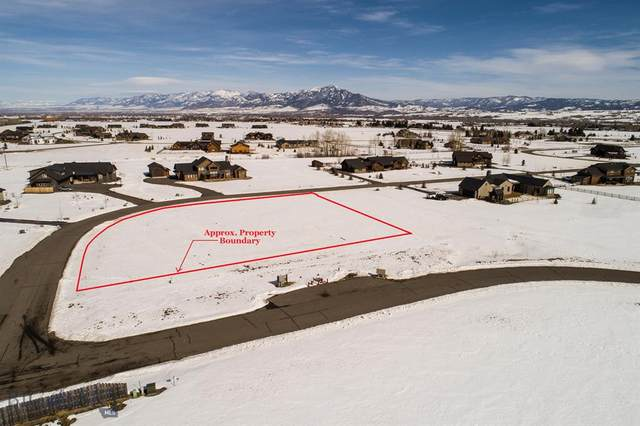 162 Hyalite Ranch Lane, Bozeman, MT 59718 (MLS #342902) :: Hart Real Estate Solutions