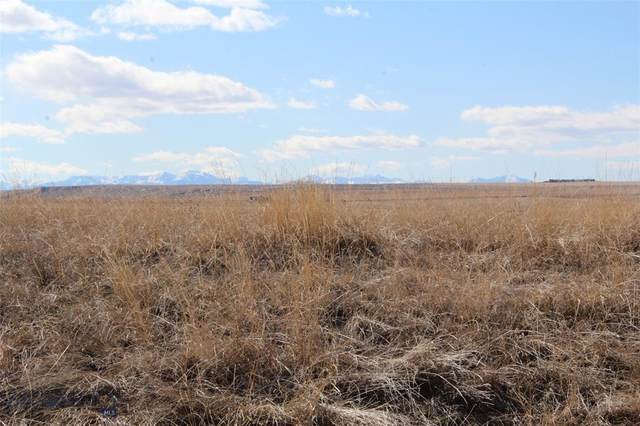 TBD Cushing Road, Manhattan, MT 59741 (MLS #344028) :: Hart Real Estate Solutions