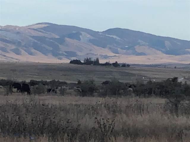 TBD Harrison Avenue, Townsend, MT 59644 (MLS #344060) :: Black Diamond Montana