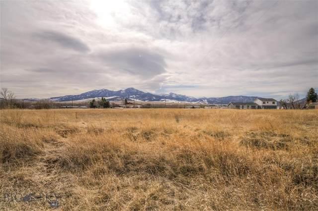 000 Arbor, Livingston, MT 59047 (MLS #344269) :: Hart Real Estate Solutions