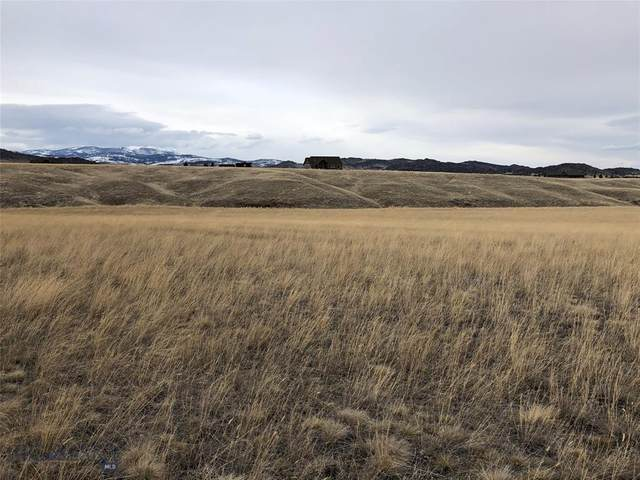 56 Montana Way, Ennis, MT 59729 (MLS #344288) :: Black Diamond Montana