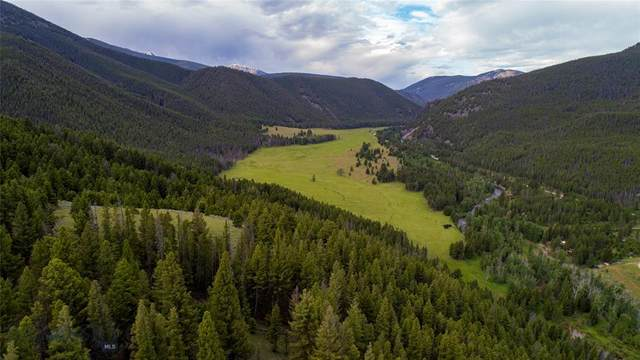 NHN Pioneer Mountains Scenic Byway, Wise River, MT 59762 (MLS #344391) :: Montana Life Real Estate