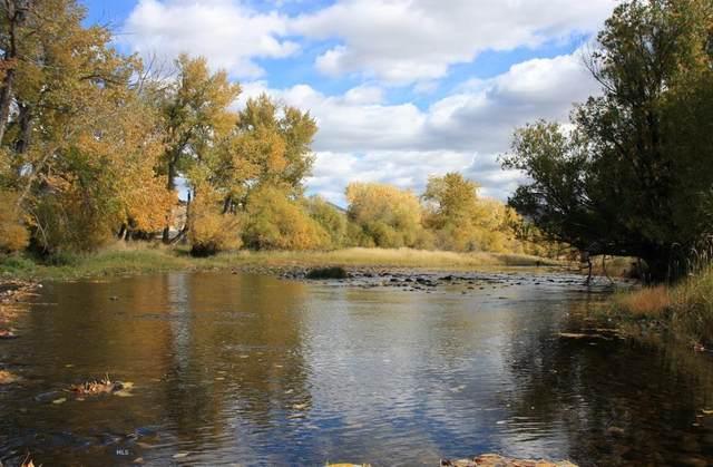 500 Cotton Willow Road, Melrose, MT 59743 (MLS #344395) :: Black Diamond Montana