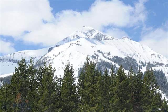 294 White Grass, Big Sky, MT 59716 (MLS #344626) :: Black Diamond Montana