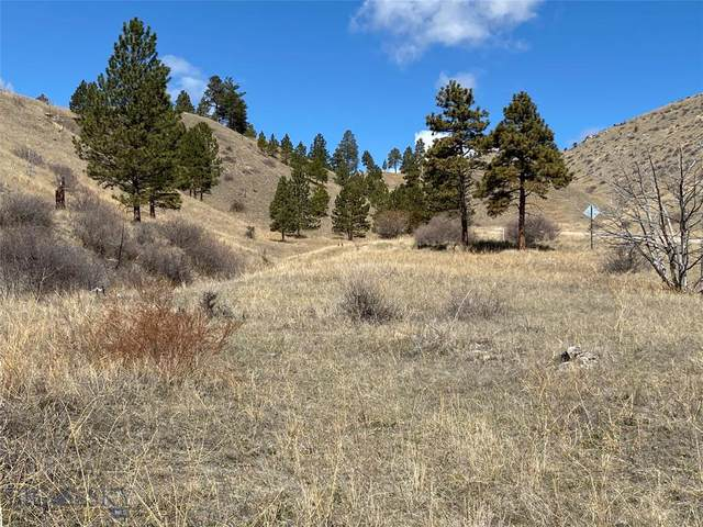 8585 Eagle View Road, Helena, MT 59602 (MLS #344727) :: Montana Life Real Estate