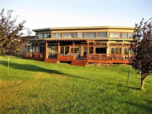 5 Hayfield Loop Trail, Ennis, MT 59729 (MLS #344862) :: L&K Real Estate