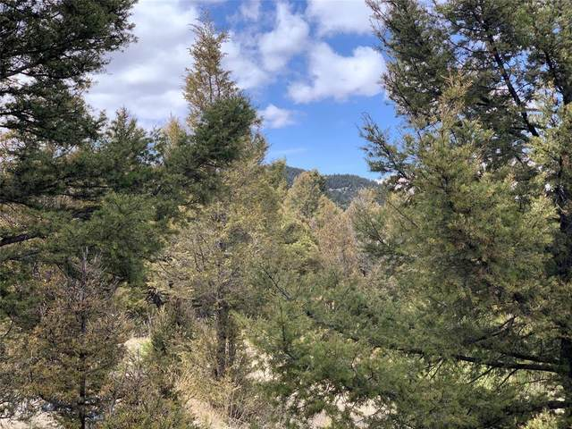 Lot 44 Lookout Trail, Butte, MT 59748 (MLS #344870) :: Hart Real Estate Solutions