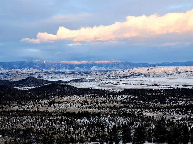 Lot 46 Pony Express Trail, Butte, MT 59748 (MLS #344880) :: Hart Real Estate Solutions