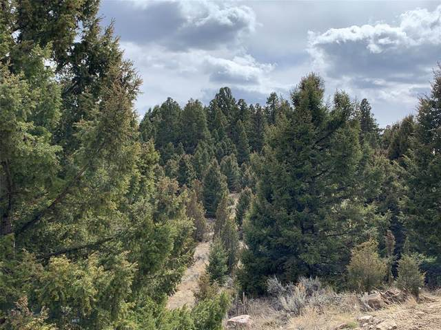 Lot 63 Pony Express Trail, Butte, MT 59748 (MLS #344886) :: Montana Life Real Estate