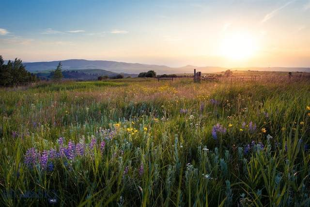 TBD 4 Tracts Of 7 Ranges, Bozeman, MT 59718 (MLS #344966) :: Hart Real Estate Solutions