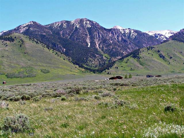 Lot A23 Sportsmans Paradise, Cameron, MT 59720 (MLS #345022) :: Montana Life Real Estate