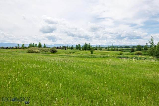 Lot 289 Black Bull Trail, Bozeman, MT 59718 (MLS #345065) :: Hart Real Estate Solutions