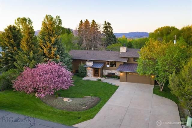 3604 Good Medicine Way, Bozeman, MT 59715 (MLS #345109) :: Hart Real Estate Solutions