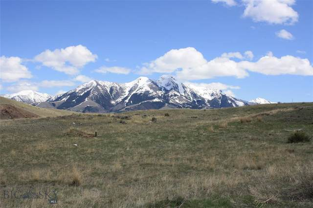 Lot 25C Arcturus Drive, Emigrant, MT 59027 (MLS #345291) :: L&K Real Estate