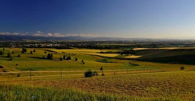 TBD Longhorn Road, Bozeman, MT 59715 (MLS #345355) :: Hart Real Estate Solutions