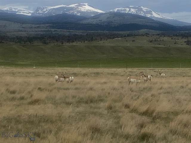 Lot 25 Pintail Ridge, Ennis, MT 59729 (MLS #345546) :: Hart Real Estate Solutions