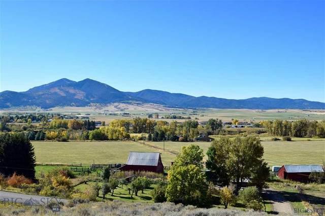 11284 Kelly Canyon Road, Bozeman, MT 59715 (MLS #345601) :: Black Diamond Montana