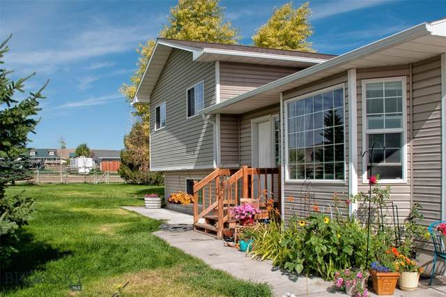 75 Cathys Cove, Dillon, MT 59725 (MLS #345669) :: Hart Real Estate Solutions