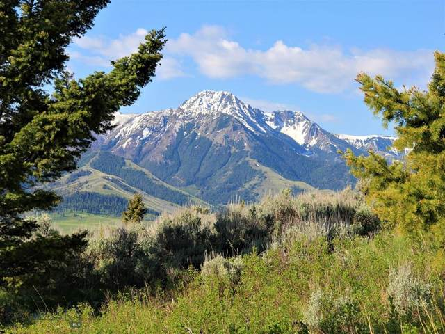 364 Grizzly Meadow Road, Emigrant, MT 59027 (MLS #345773) :: Hart Real Estate Solutions