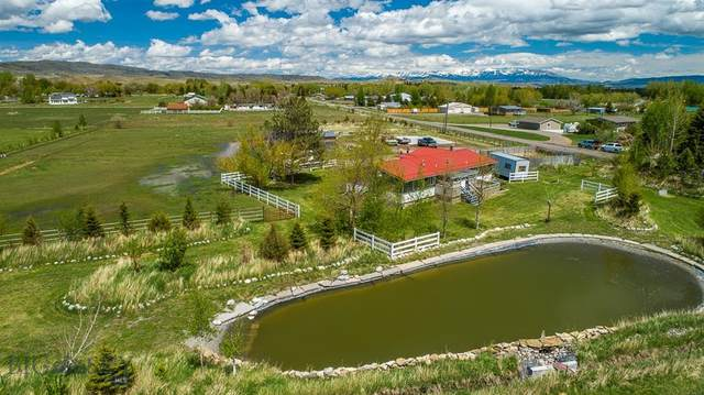 146 Paradise Drive, Livingston, MT 59047 (MLS #345786) :: Hart Real Estate Solutions