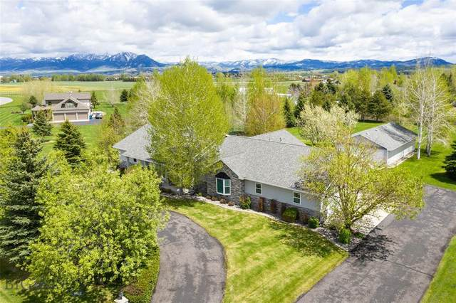 202 Terrance Loop, Bozeman, MT 59718 (MLS #345817) :: L&K Real Estate