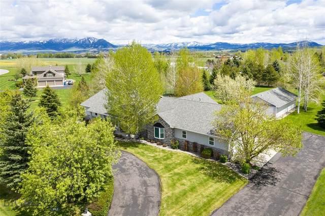 202 Terrance Loop, Bozeman, MT 59718 (MLS #345817) :: Hart Real Estate Solutions