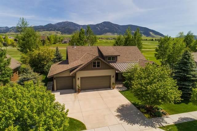 3105 Augusta Drive, Bozeman, MT 59715 (MLS #345832) :: Hart Real Estate Solutions