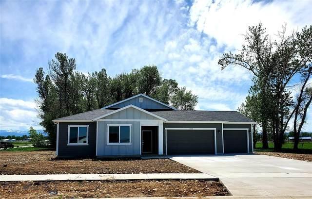 1596 Stewart Loop, Bozeman, MT 59718 (MLS #345969) :: Hart Real Estate Solutions