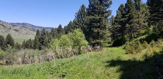 Lot E-1 Lake Drive, Livingston, MT 59047 (MLS #346045) :: Hart Real Estate Solutions